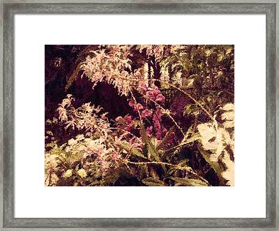 Orchids In The Atrium Framed Print by Susan Maxwell Schmidt