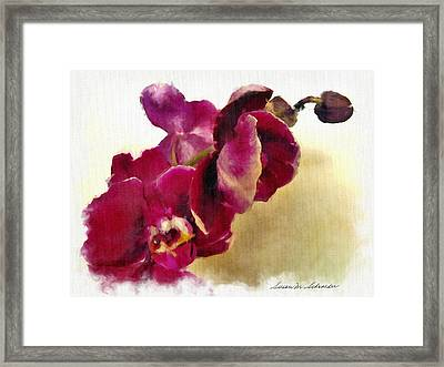 Orchids No. 5 Framed Print