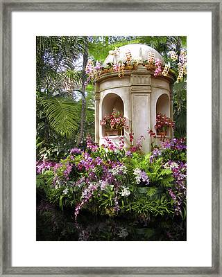 Orchids On Display Framed Print by Jessica Jenney