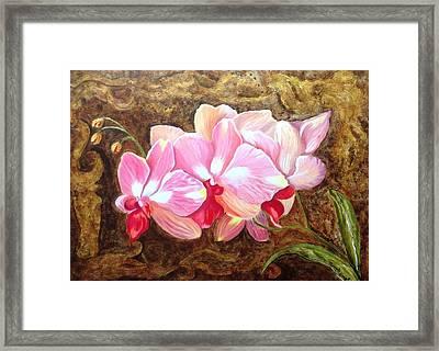 Orchids Framed Print by Renate Voigt