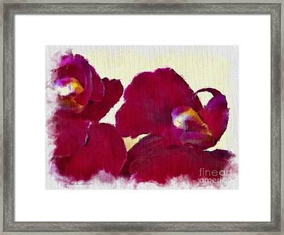 Orchids No. 4 Framed Print