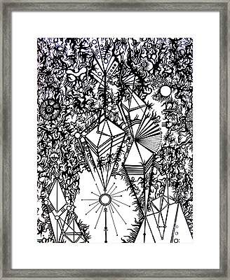 Order And Chaos Framed Print by Devin  Cogger