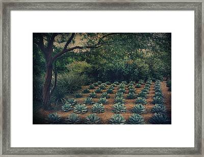 Order Framed Print by Laurie Search