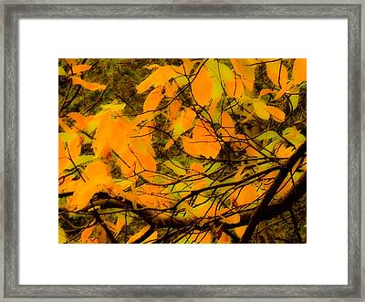 Ore Leaves Framed Print