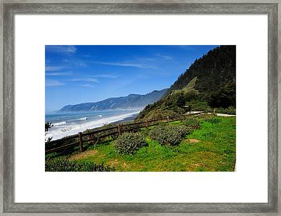 Oregon Coast Framed Print by Donald Fink
