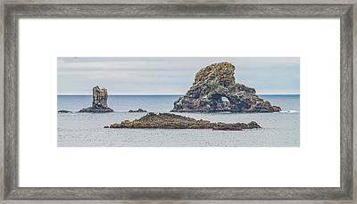 Oregon Coast Ecola State Park Framed Print by Dennis Bucklin