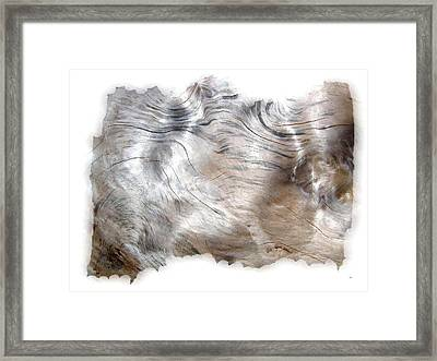Oregon Driftwood Framed Print
