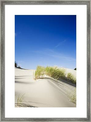 Oregon Dunes Framed Print by Charmian Vistaunet