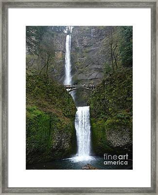 Oregon Long Shot Of  Falls Framed Print
