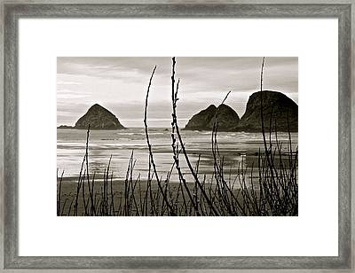 Oregon Seascape Framed Print by Milton Thompson