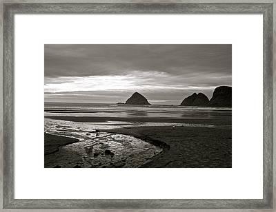 Oregon Seashore Framed Print by Milton Thompson