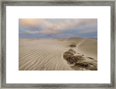 Oregon Textures Framed Print