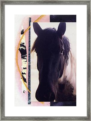 Framed Print featuring the photograph Oreo by Mary Ann  Leitch