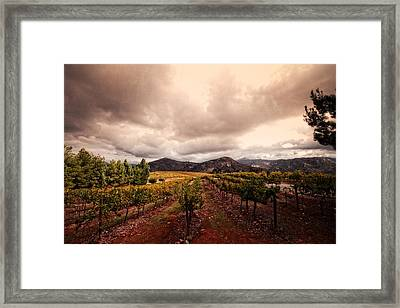 Framed Print featuring the photograph Orfila by Ryan Weddle