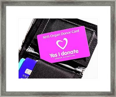 Organ Donor Card In A Wallet Framed Print by Cordelia Molloy