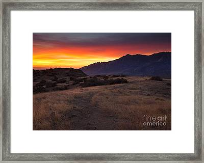 Organ Mountain Dawn Framed Print by Mike  Dawson
