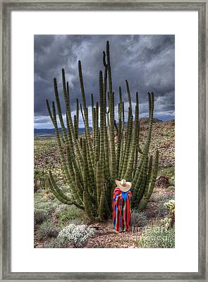 Organ Pipe Cactus The Visitor 1 Framed Print