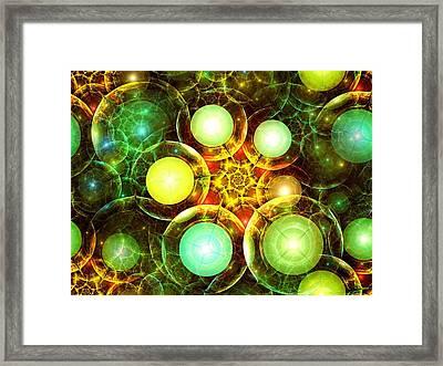 Organic Framed Print