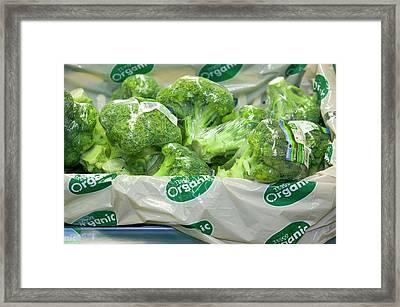 Organic Broccoli For Sale Framed Print