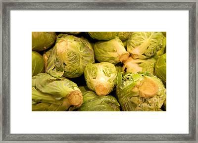 Organic Cabbage Framed Print