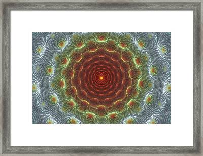 Organic Intricacy Framed Print by Justin Sanchez