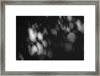 Organographias Limited Edition 1 Of 1 Framed Print