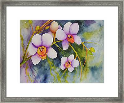 Orchids In My Garden Framed Print