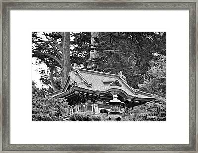 Framed Print featuring the photograph Oriental Garden #2 by George Mount