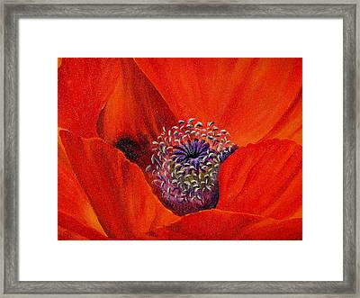 Framed Print featuring the painting Oriental Poppy by Jo Appleby
