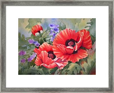 Oriental Poppy Framed Print