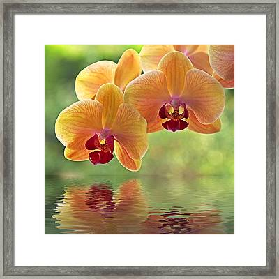 Oriental Spa - Square Framed Print