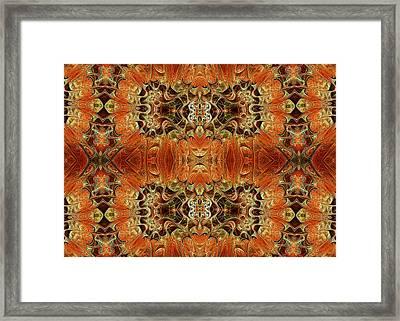 Oriental Variations Framed Print by Georgiana Romanovna