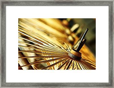 Origin Of Umbrella Framed Print
