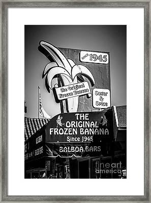 Original Frozen Banana Sign On Balboa Island Picture Framed Print by Paul Velgos