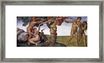 Original Sin And Banishment From The Garden Of Eden Framed Print by Michelangelo Buonarroti
