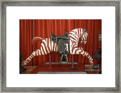 Original Zebra Carousel Ride Framed Print