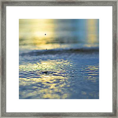 Origins Framed Print by Laura Fasulo