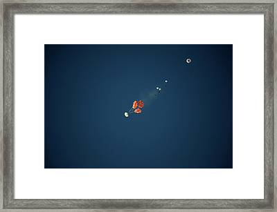 Orion Spacecraft Landing Test Framed Print by Nasa