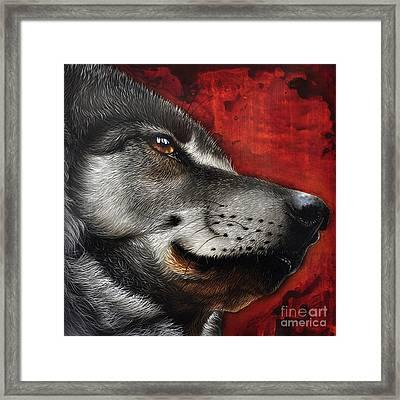 Orion Wolf Framed Print by Jurek Zamoyski