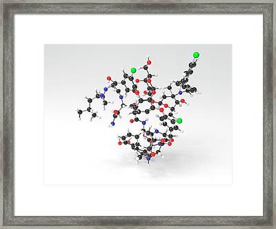 Oritavancin Antibiotic Molecule Framed Print by Indigo Molecular Images