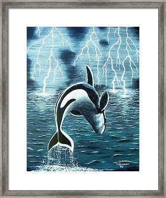 Orka     Killer Whale Framed Print