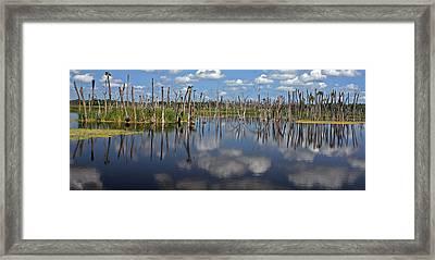 Orlando Wetlands Cloudscape 5 Framed Print by Mike Reid