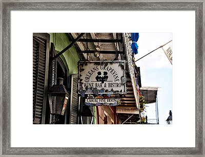 Orleans Grapevine Framed Print by Bill Cannon