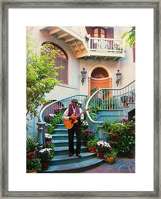 Orleans Picker Framed Print by Timothy Ramos
