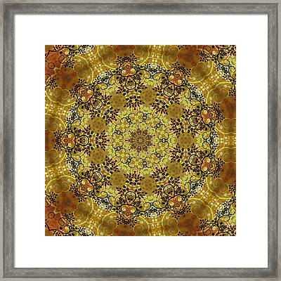 Ornamental 1 Version 2 Medallion Framed Print