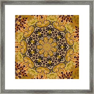Ornamental 1 Version 3 Medallion Framed Print