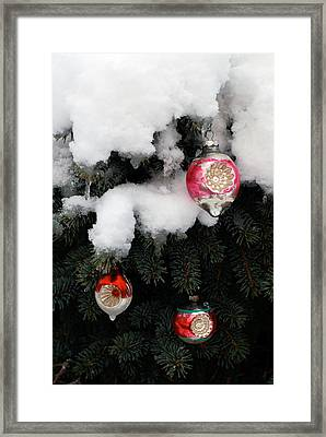 Ornaments Framed Print