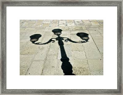 Ornate Shadow Framed Print