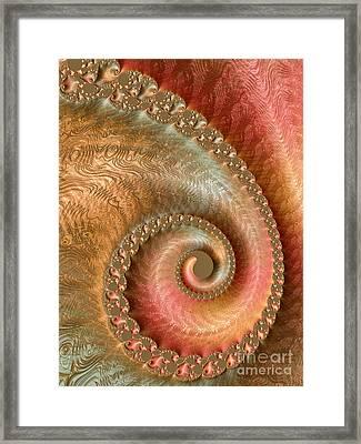 Ornate Swirl Framed Print