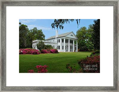 Framed Print featuring the photograph Orton Plantation by Bob Sample